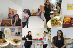 Distribution de fruits - EOS France